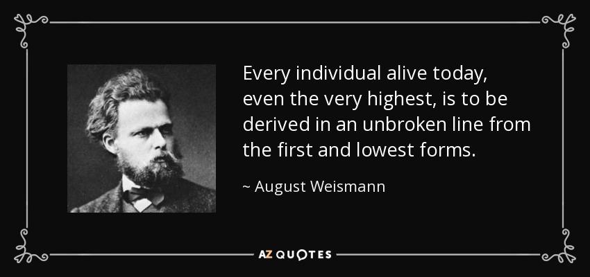 august weismann essays upon heredity August weismann (1834–1914), the great german theorist and  weismann, a  (1889) essays upon heredity and kindred biological.