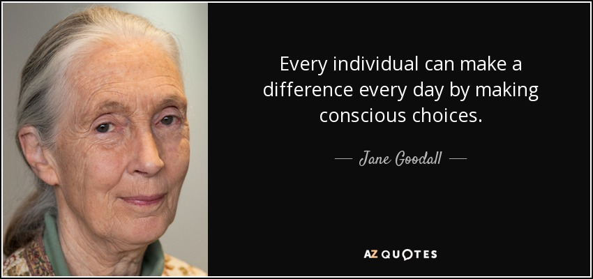 Every individual can make a difference every day by making conscious choices. - Jane Goodall