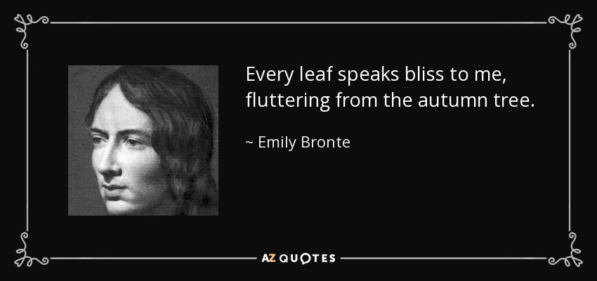 Every leaf speaks bliss to me, fluttering from the autumn tree. - Emily Bronte