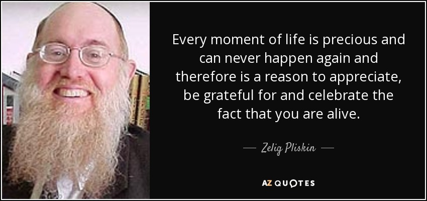 Every moment of life is precious and can never happen again and therefore is a reason to appreciate, be grateful for and celebrate the fact that you are alive. - Zelig Pliskin