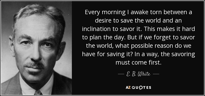 Every morning I awake torn between a desire to save the world and an inclination to savor it. This makes it hard to plan the day. But if we forget to savor the world, what possible reason do we have for saving it? In a way, the savoring must come first. - E. B. White