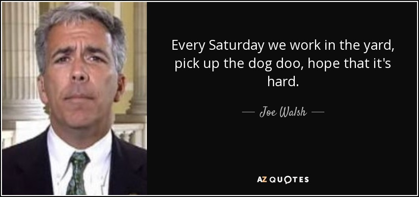 Every Saturday we work in the yard, pick up the dog doo, hope that it's hard. - Joe Walsh