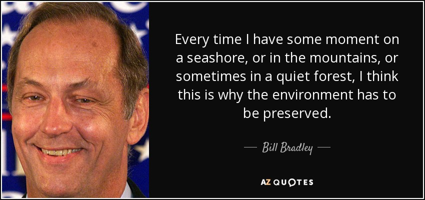 Every time I have some moment on a seashore, or in the mountains, or sometimes in a quiet forest, I think this is why the environment has to be preserved. - Bill Bradley
