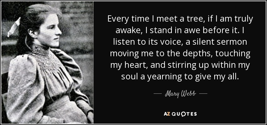 Every time I meet a tree, if I am truly awake, I stand in awe before it. I listen to its voice, a silent sermon moving me to the depths, touching my heart, and stirring up within my soul a yearning to give my all. - Mary Webb