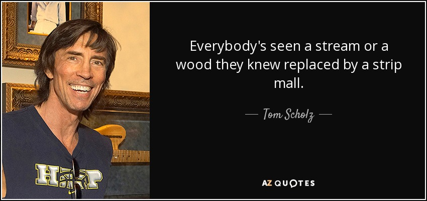 Everybody's seen a stream or a wood they knew replaced by a strip mall. - Tom Scholz