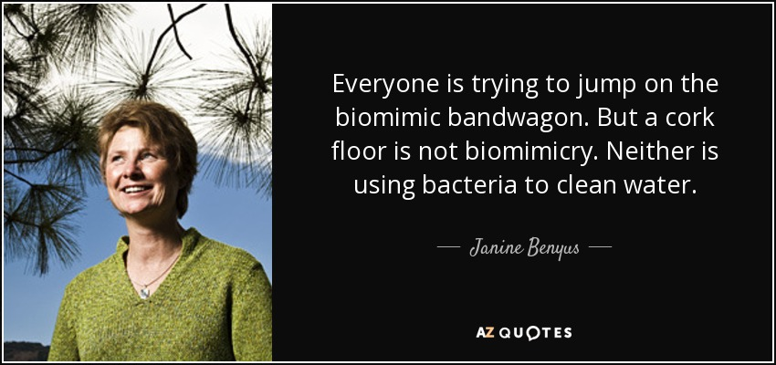 Everyone is trying to jump on the biomimic bandwagon. But a cork floor is not biomimicry. Neither is using bacteria to clean water. - Janine Benyus