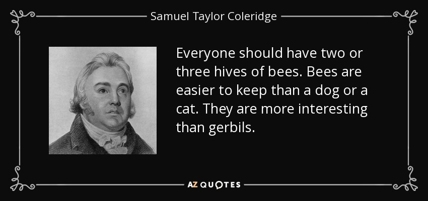 Everyone should have two or three hives of bees. Bees are easier to keep than a dog or a cat. They are more interesting than gerbils. - Samuel Taylor Coleridge