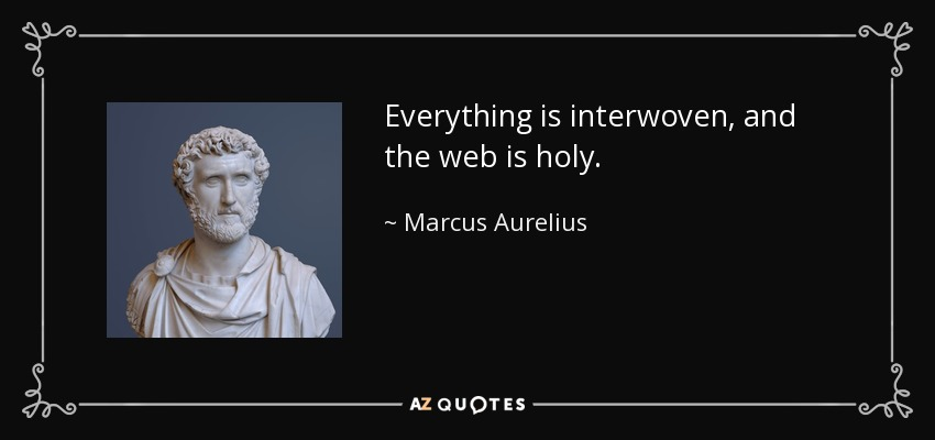 Everything is interwoven, and the web is holy. - Marcus Aurelius