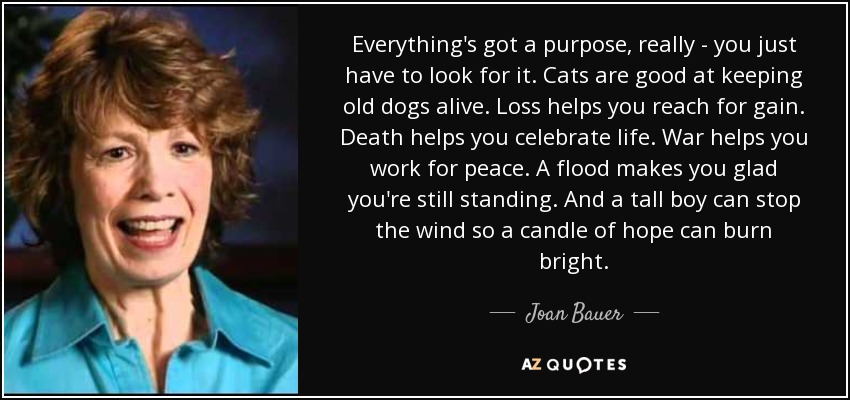 Everything's got a purpose, really - you just have to look for it. Cats are good at keeping old dogs alive. Loss helps you reach for gain. Death helps you celebrate life. War helps you work for peace. A flood makes you glad you're still standing. And a tall boy can stop the wind so a candle of hope can burn bright. - Joan Bauer