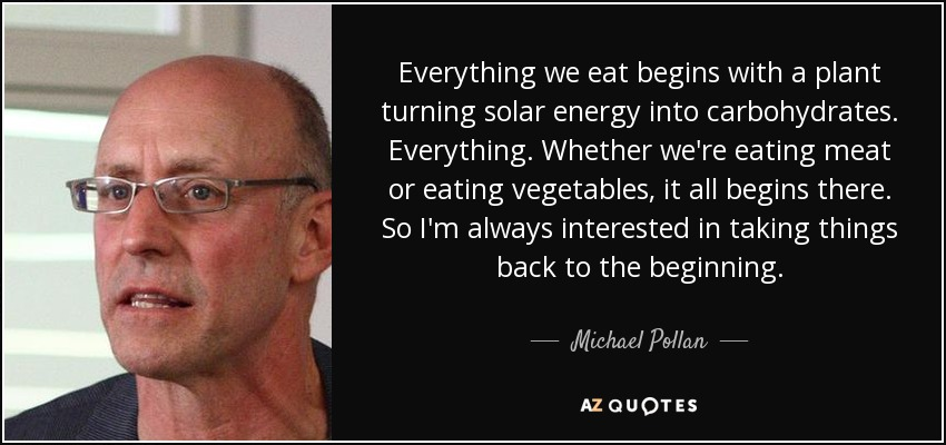 Everything we eat begins with a plant turning solar energy into carbohydrates. Everything. Whether we're eating meat or eating vegetables, it all begins there. So I'm always interested in taking things back to the beginning. - Michael Pollan