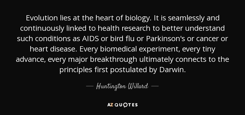 Evolution lies at the heart of biology. It is seamlessly and continuously linked to health research to better understand such conditions as AIDS or bird flu or Parkinson's or cancer or heart disease. Every biomedical experiment, every tiny advance, every major breakthrough ultimately connects to the principles first postulated by Darwin. - Huntington Willard