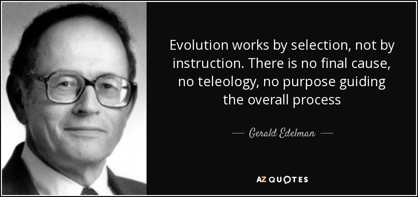 Evolution works by selection, not by instruction. There is no final cause, no teleology, no purpose guiding the overall process - Gerald Edelman