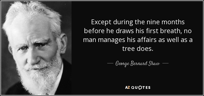 Except during the nine months before he draws his first breath, no man manages his affairs as well as a tree does. - George Bernard Shaw
