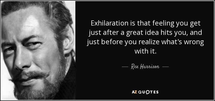 Exhilaration is that feeling you get just after a great idea hits you, and just before you realize what's wrong with it. - Rex Harrison