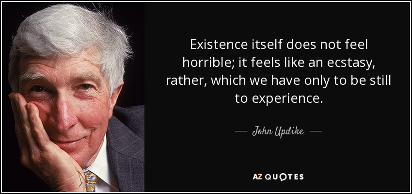 Existence itself does not feel horrible; it feels like an ecstasy, rather, which we have only to be still to experience. - John Updike