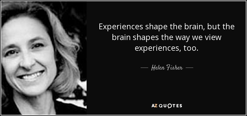 Experiences shape the brain, but the brain shapes the way we view experiences, too. - Helen Fisher