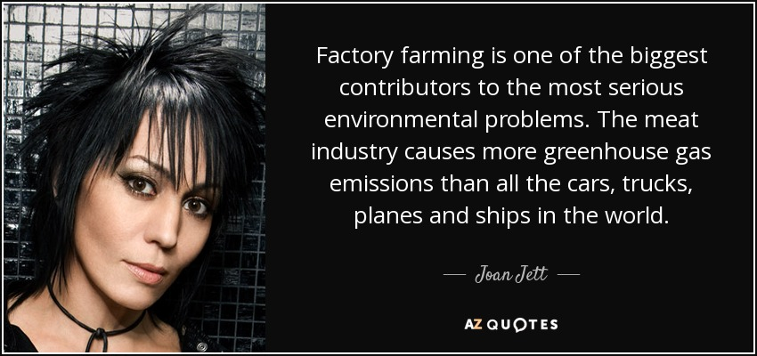 Factory farming is one of the biggest contributors to the most serious environmental problems. The meat industry causes more greenhouse gas emissions than all the cars, trucks, planes and ships in the world. - Joan Jett