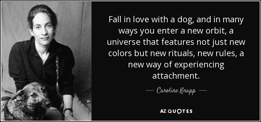 Fall in love with a dog, and in many ways you enter a new orbit, a universe that features not just new colors but new rituals, new rules, a new way of experiencing attachment. - Caroline Knapp