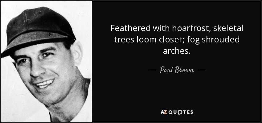 Feathered with hoarfrost, skeletal trees loom closer; fog shrouded arches. - Paul Brown