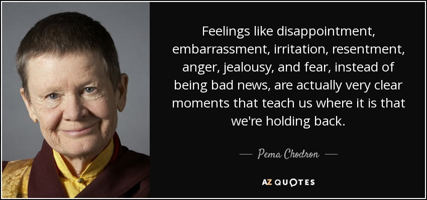 Feelings like disappointment, embarrassment, irritation, resentment, anger, jealousy, and fear, instead of being bad news, are actually very clear moments that teach us where it is that we're holding back. - Pema Chodron