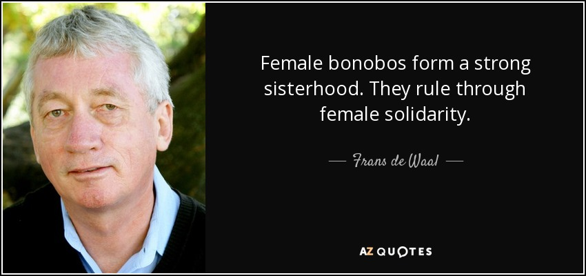Female bonobos form a strong sisterhood. They rule through female solidarity. - Frans de Waal