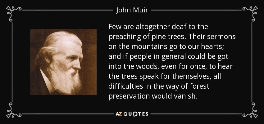 Few are altogether deaf to the preaching of pine trees. Their sermons on the mountains go to our hearts; and if people in general could be got into the woods, even for once, to hear the trees speak for themselves, all difficulties in the way of forest preservation would vanish. - John Muir