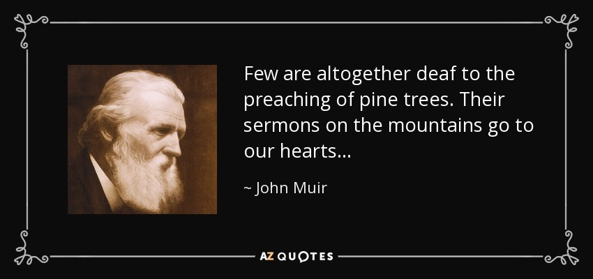 Few are altogether deaf to the preaching of pine trees. Their sermons on the mountains go to our hearts . . . - John Muir