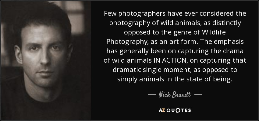 Few photographers have ever considered the photography of wild animals, as distinctly opposed to the genre of Wildlife Photography, as an art form. The emphasis has generally been on capturing the drama of wild animals IN ACTION, on capturing that dramatic single moment, as opposed to simply animals in the state of being. - Nick Brandt