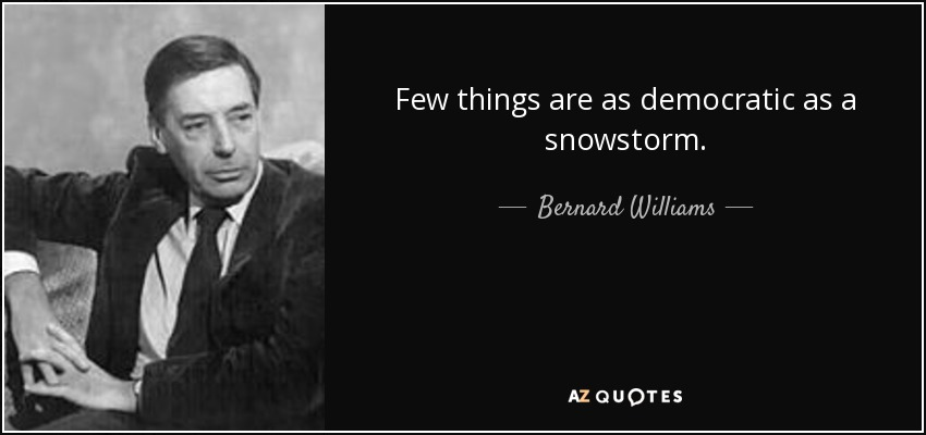 Few things are as democratic as a snowstorm. - Bernard Williams
