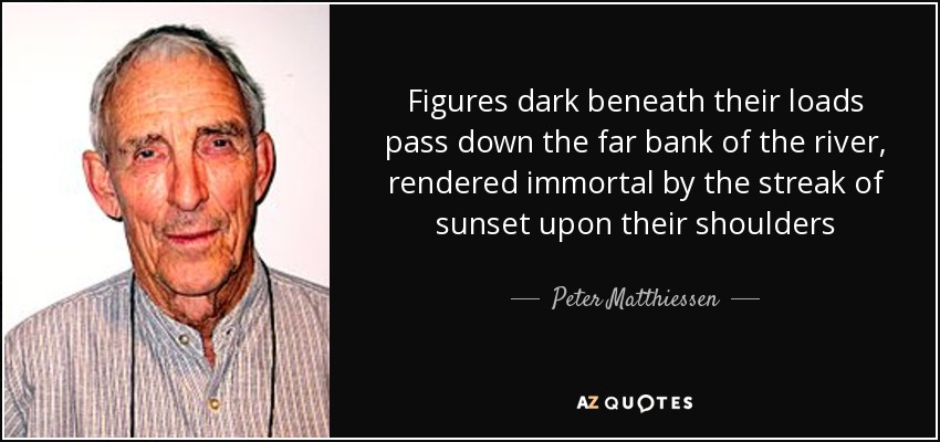 Figures dark beneath their loads pass down the far bank of the river, rendered immortal by the streak of sunset upon their shoulders - Peter Matthiessen