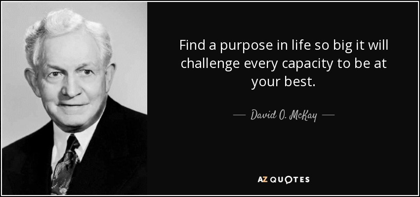 Find a purpose in life so big it will challenge every capacity to be at your best. - David O. McKay