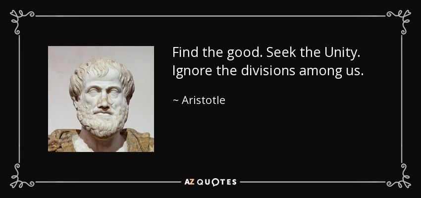 Find the good. Seek the Unity. Ignore the divisions among us. - Aristotle