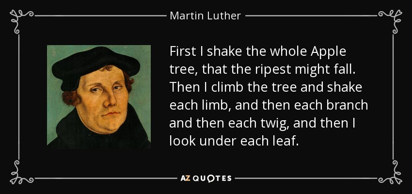 First I shake the whole Apple tree, that the ripest might fall. Then I climb the tree and shake each limb, and then each branch and then each twig, and then I look under each leaf. - Martin Luther