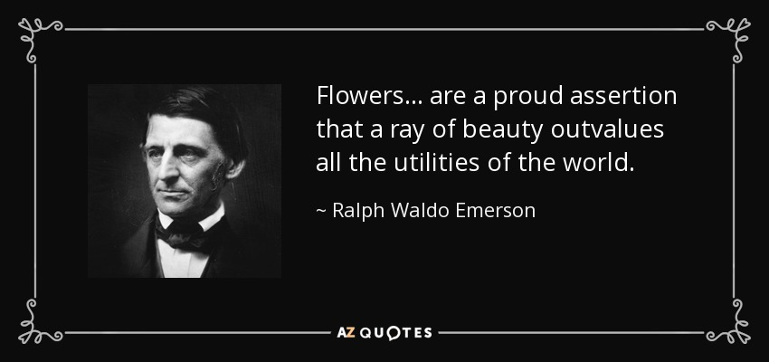 Flowers... are a proud assertion that a ray of beauty outvalues all the utilities of the world. - Ralph Waldo Emerson