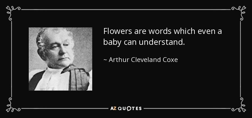 Flowers are words which even a baby can understand. - Arthur Cleveland Coxe