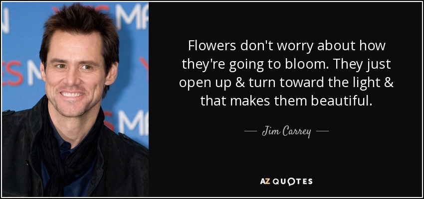 Flowers don't worry about how they're going to bloom. They just open up & turn toward the light & that makes them beautiful. - Jim Carrey