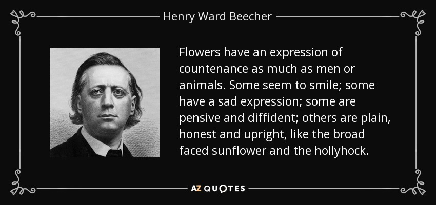 Flowers have an expression of countenance as much as men or animals. Some seem to smile; some have a sad expression; some are pensive and diffident; others are plain, honest and upright, like the broad faced sunflower and the hollyhock. - Henry Ward Beecher
