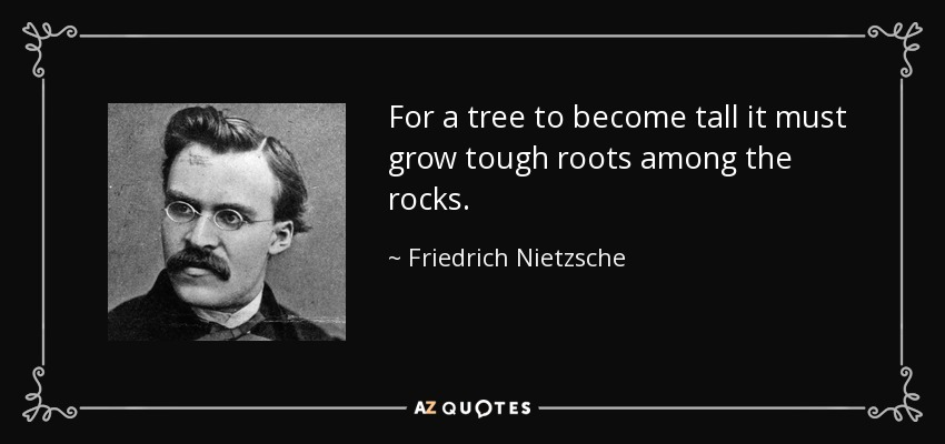 For a tree to become tall it must grow tough roots among the rocks. - Friedrich Nietzsche