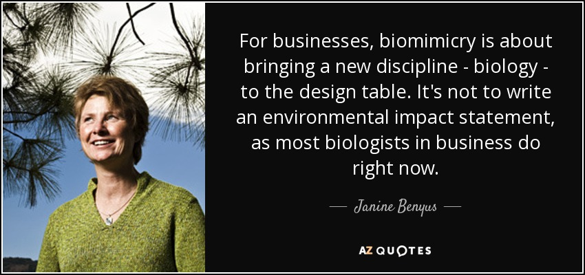 For businesses, biomimicry is about bringing a new discipline - biology - to the design table. It's not to write an environmental impact statement, as most biologists in business do right now. - Janine Benyus