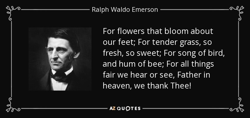 For flowers that bloom about our feet; For tender grass, so fresh, so sweet; For song of bird, and hum of bee; For all things fair we hear or see, Father in heaven, we thank Thee! - Ralph Waldo Emerson