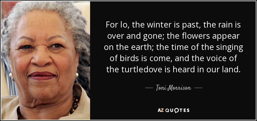For lo, the winter is past, the rain is over and gone; the flowers appear on the earth; the time of the singing of birds is come, and the voice of the turtledove is heard in our land. - Toni Morrison