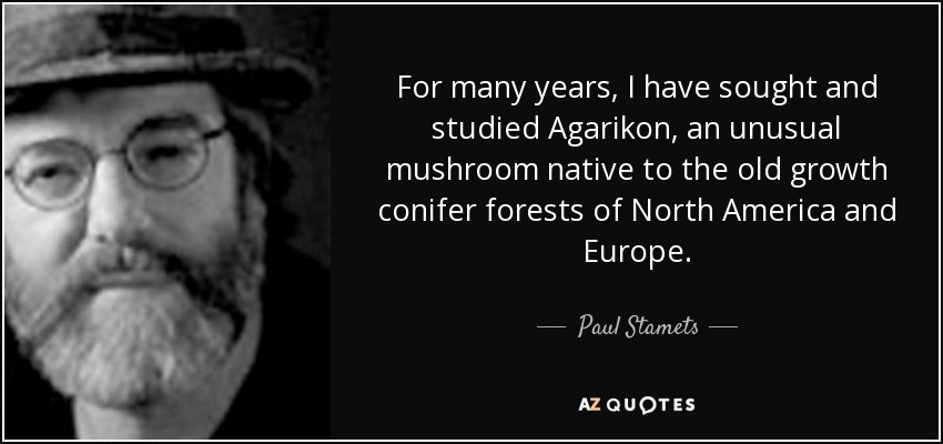 For many years, I have sought and studied Agarikon, an unusual mushroom native to the old growth conifer forests of North America and Europe. - Paul Stamets