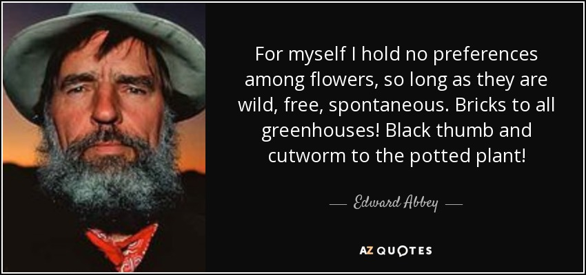 For myself I hold no preferences among flowers, so long as they are wild, free, spontaneous. Bricks to all greenhouses! Black thumb and cutworm to the potted plant! - Edward Abbey
