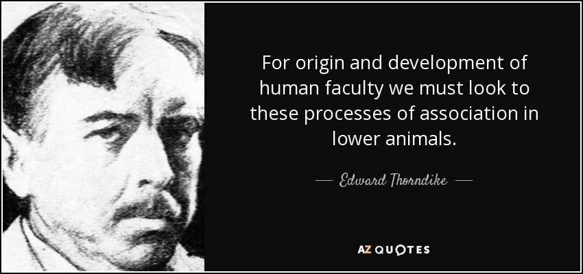 For origin and development of human faculty we must look to these processes of association in lower animals. - Edward Thorndike