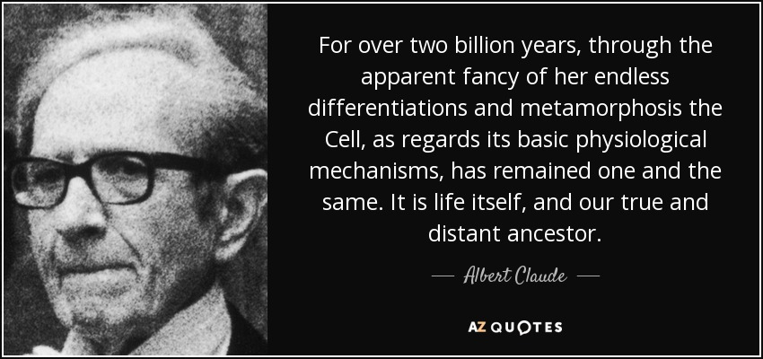 For over two billion years, through the apparent fancy of her endless differentiations and metamorphosis the Cell, as regards its basic physiological mechanisms, has remained one and the same. It is life itself, and our true and distant ancestor. - Albert Claude