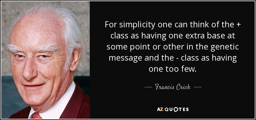 For simplicity one can think of the + class as having one extra base at some point or other in the genetic message and the - class as having one too few. - Francis Crick