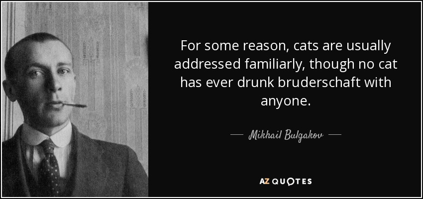 For some reason, cats are usually addressed familiarly, though no cat has ever drunk bruderschaft with anyone. - Mikhail Bulgakov