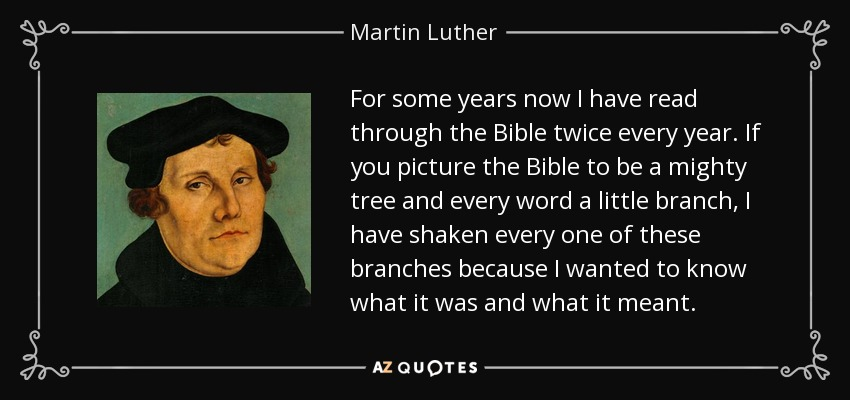For some years now I have read through the Bible twice every year. If you picture the Bible to be a mighty tree and every word a little branch, I have shaken every one of these branches because I wanted to know what it was and what it meant. - Martin Luther