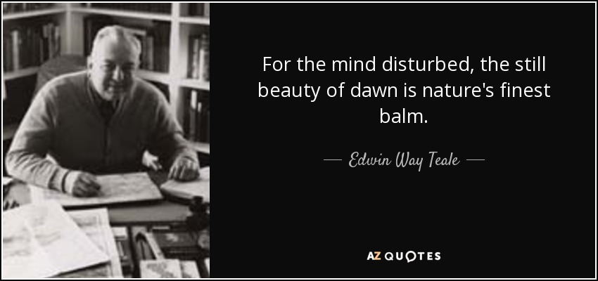 For the mind disturbed, the still beauty of dawn is nature's finest balm. - Edwin Way Teale