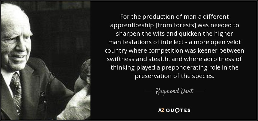 For the production of man a different apprenticeship [from forests] was needed to sharpen the wits and quicken the higher manifestations of intellect - a more open veldt country where competition was keener between swiftness and stealth, and where adroitness of thinking played a preponderating role in the preservation of the species. - Raymond Dart